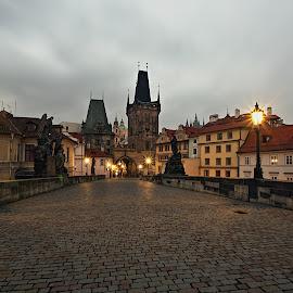Malostranské věže by Miloš Stanko - Buildings & Architecture Public & Historical ( věže, most, praha )