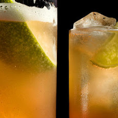 Spiced Gin and Tonic Recipe