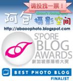 入围《新加坡部落格大奖》最靓摄影部落格十强,支持《阿包摄影空间》!