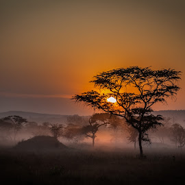 Mburo sunrise by Wim Moons - Landscapes Sunsets & Sunrises ( uganda, scenery, sunrise, landscape, africa )