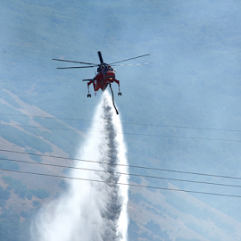 Fire Helicopter 1 by Dennis Robertson - News & Events Disasters ( helicopter,  )