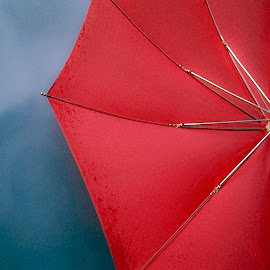Red Umbrella by David Stone - Artistic Objects Other Objects ( reflection, red, still life, umbrella, red umbrella, closeup )