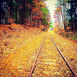 Autumn leaves on the tracks. by Jody Rowe - Instagram & Mobile iPhone