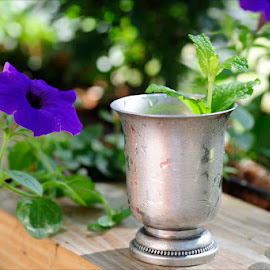 Mint Julep by Dub Scroggin - Food & Drink Alcohol & Drinks ( alcohol, drink, mint julep, silver cup, kentucky derby )