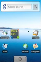 Screenshot of Pedometer Widget Lite