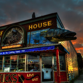 Beaver House Sunrise by David Johnson - City,  Street & Park  Skylines ( building, colorful, artistic, historical, sunrise )