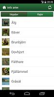Screenshot of Viltappen