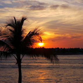 by Michael Sharp - Landscapes Sunsets & Sunrises