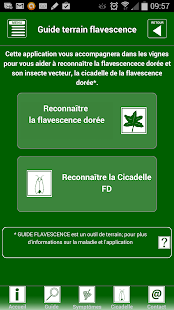 GUIDE FLAVESCENCE BOURGOGNE - screenshot