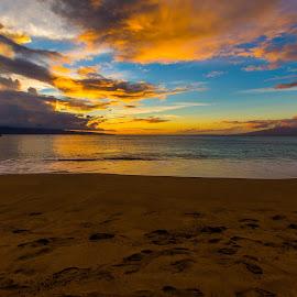 by Scott Harwood - Landscapes Sunsets & Sunrises ( golden hour, sunset, sunrise )