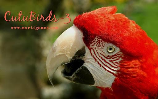 Cutu-Birds-3