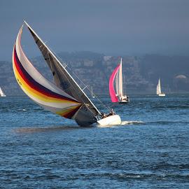 by Melissa Wertz - Transportation Boats
