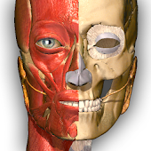 Free Anatomy Learning - 3D Atlas APK for Windows 8