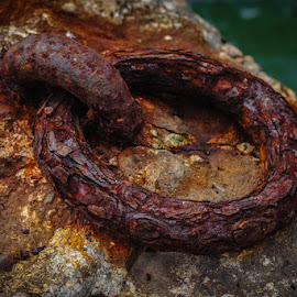 Still holding on by Paulo Silva - Artistic Objects Other Objects ( water, old, cacilhas portugal, tejo river, sea, rusty,  )