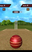 Screenshot of Flick Cricket 3D
