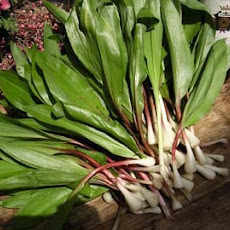 Ramps with Romesco