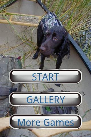狗狗拼圖:美國水獵犬