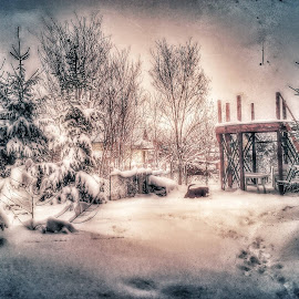 Winter Story in Garden by Nat Bolfan-Stosic - Nature Up Close Gardens & Produce ( story, winter, snow, white, garden )