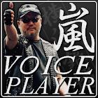 【横浜銀蝿】嵐ボイスプレーヤー icon