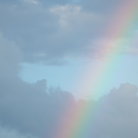by Lisa Hughart - Landscapes Weather ( colorful, weather, trees, landscape, rainbow )