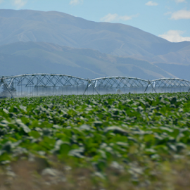 agricultures progress by Todd Cunnard - Landscapes Mountains & Hills ( water, farm, hills, mountains, irrigator, agriculture, center pivot, crop, new zealand )