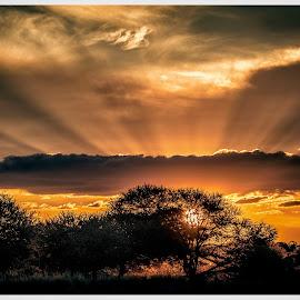 by Denis Smit - Landscapes Sunsets & Sunrises (  )