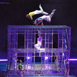 Circus Trampoline Act by Stephen Beatty - News & Events Entertainment
