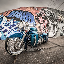 AZ Rider by Cali Original - Transportation Motorcycles ( harley, harley davidson, lowrider, graffiti, arizona, art, motorcycle, hd, low )