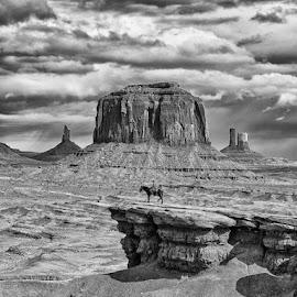 Marlboro Man  by Robert Stocki - Landscapes Deserts ( monument valley, arizona )
