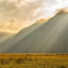 Bromo's Rays of Light by Kristianus Setyawan - Landscapes Mountains & Hills ( clouds, hills, afternoon, landscape, savannah, mountains, nature, sunset, indonesia, ray of light, landscape photography, nature photography, sunshine, bromo, skyscape )