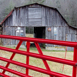 Old Barn in Country by Terry Linton - Buildings & Architecture Architectural Detail ( building, wood, barn, historical, old signs,  )