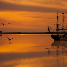Tall ship in the bay by Tom Bucci - Transportation Boats
