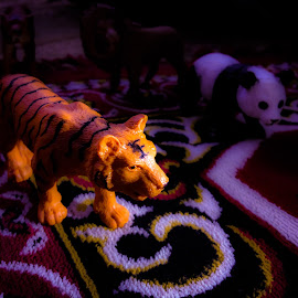 Indoor Forest by Ahmed Taha - Artistic Objects Toys ( lion, home, tiger, toy, dream, mobile )