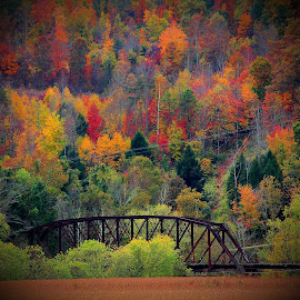 Old Artemus Bridge by Paul Mays - Landscapes Mountains & Hills