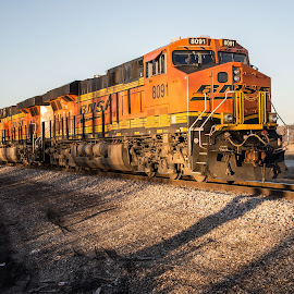 BNSF at sunset by Jonathan Abrams - Transportation Trains ( iowa, engine, sunset, locomotive, train )