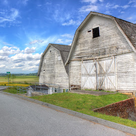 White Barn by Ernie Kasper - Buildings & Architecture Architectural Detail ( clouds, canada, wood, barn, white, cloud, british columbia, weathered )