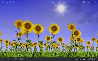 Screenshot of Sunflowers Free Live Wallaper