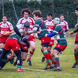by Pedro Tasinato - Sports & Fitness Rugby