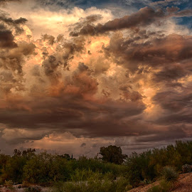 Monsoon at sunset by Charlie Alolkoy - Landscapes Weather ( sky, arizona, tucson, cloud, weather, storm )