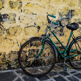 Old bicycle  by Peter Jerman - Transportation Bicycles ( old, mauritius, rust, bicycle )