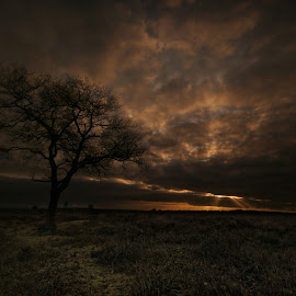 Cloudy day @ Postbank by Iris Beukhof - Landscapes Cloud Formations ( clouds, nature, wolken, natuur, beukiegirl, veluwe )