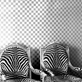 two chairs by Magdalena Wysoczanska - Artistic Objects Furniture ( monochrome, pattern, black and white, pair, chairs, design )