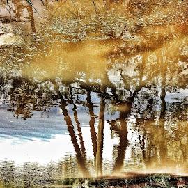Esse é um pequeno estudo sobre a realidade e seus reflexos. Cada um enxerga aquilo que é fruto de sua bagagem de vida. Onde muitos veem um rio poluído, eu vejo a possibilidade de recuperação! by Regina Bressan - Abstract Fine Art