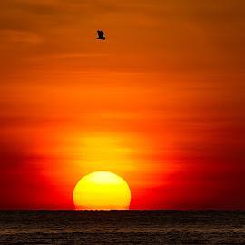 by Adanan Sidjoh - Landscapes Sunsets & Sunrises (  )