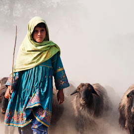 A Girl Shepherd by Alí AWaís - People Street & Candids ( animals, shepherd, girl, bevy, herd, dust, sheep, candid, light,  )