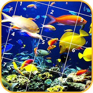 Jigsaw puzzles fish android apps on google play for Fish identification apps