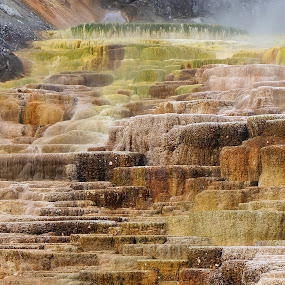 Yellowstone Hot Spring Terraces by Jim Czech - Nature Up Close Rock & Stone ( terrace, yellowstone national park, streams, rocks, minerals, hot spring,  )