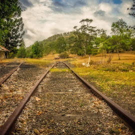 In the Distance by Esther Visser - Transportation Railway Tracks