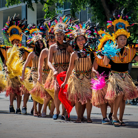 30th Annual Caribbean Arts Festivasl by Joseph Law - News & Events World Events ( parade, world even, art festival, celebrations, 30th annual, caribbean )