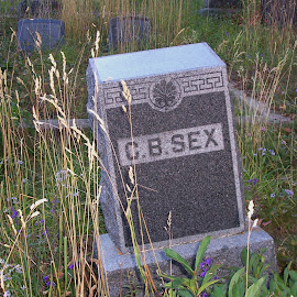 Sex is dead. by Vicki Strickland - Novices Only Objects & Still Life ( sex, grassy, cemetery, headstone, grave )